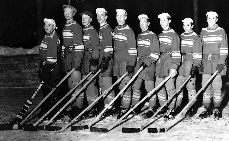 FIF ishockey B-lag 194